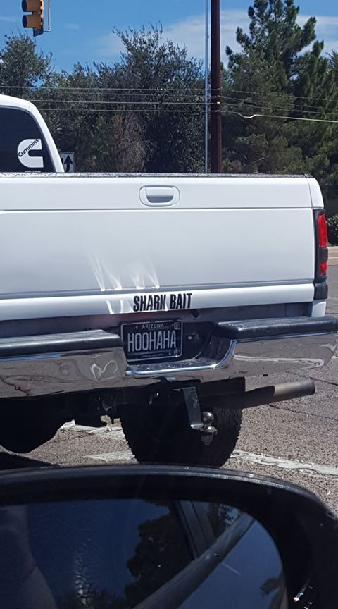 ...I feel like this person is weird enough that they probably live in the same town I do now. I see that Arizona plate.