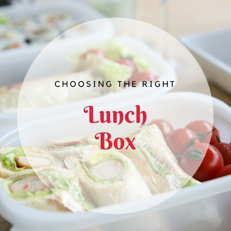 COOKINA helps you choose the perfect lunch box for the back to school season. https://www.facebook.com/Cookinaco/