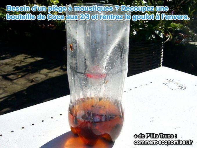 piege à moustique astucieux avec une bouteille de coca