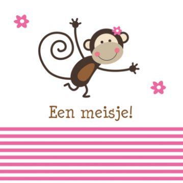 Lief geboortekaartje met vrolijke aap en rose strepen, binnenin heeft het aapje een rose ballon vast.