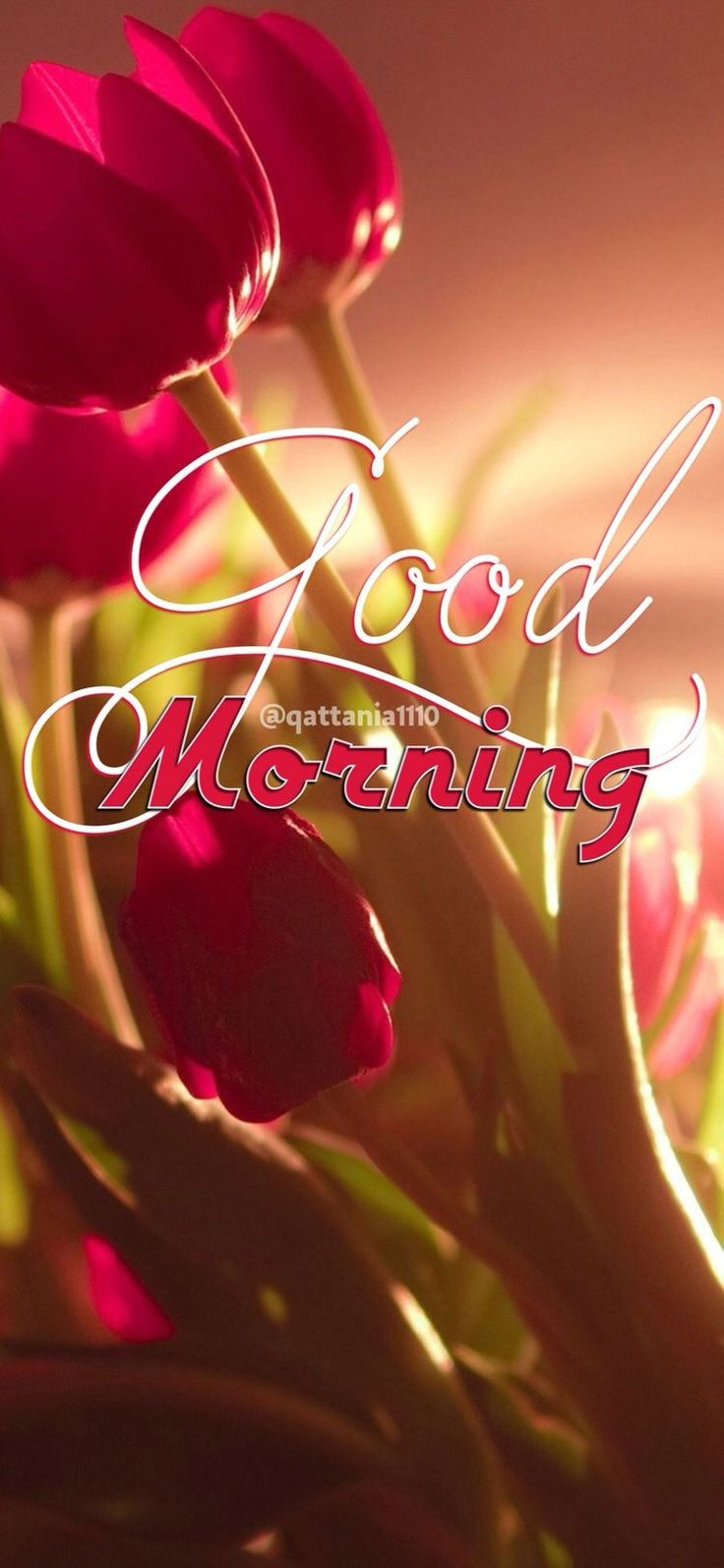 Good morning....have a lovely day