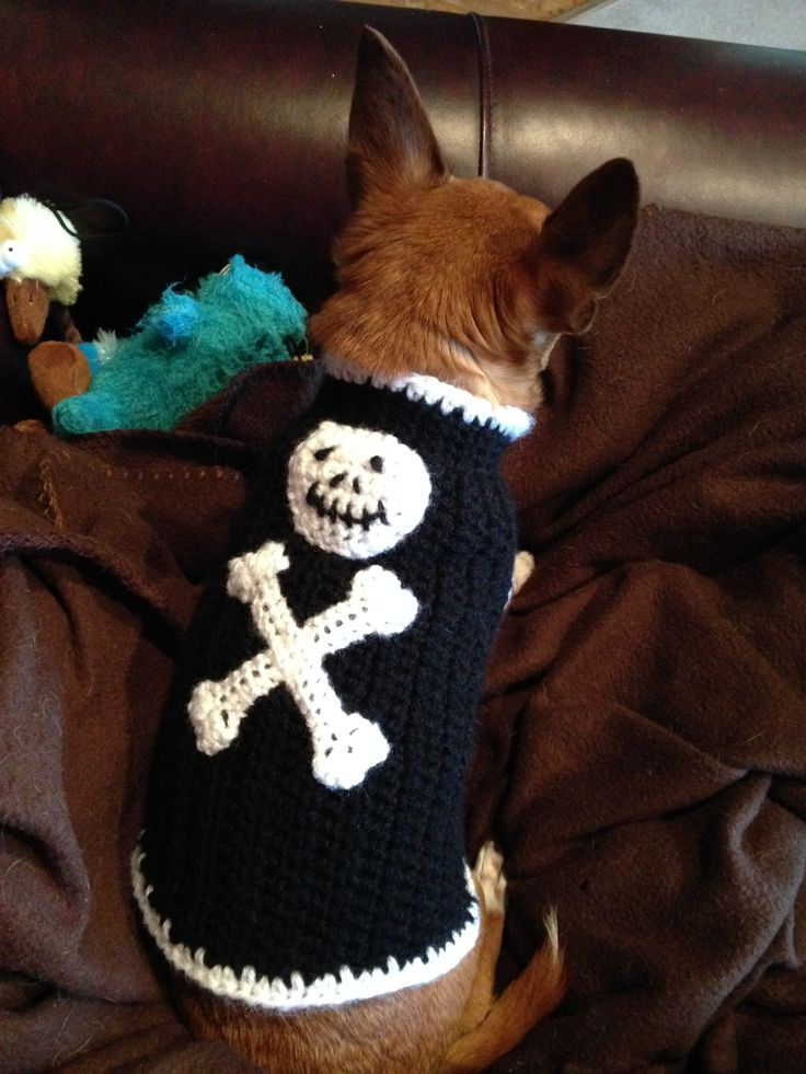 Skull and crossbones crocheted dog sweater