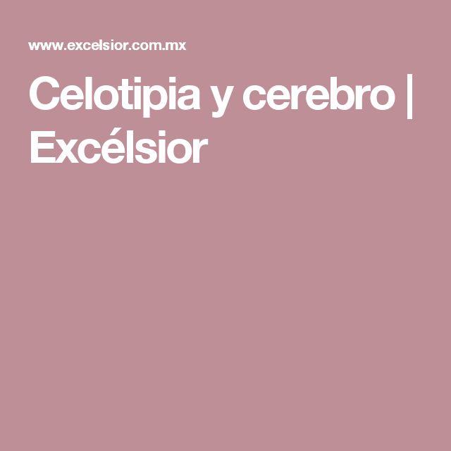 Celotipia y cerebro   Excélsior