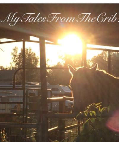 MyTalesFromTheCrib: The Season Of No