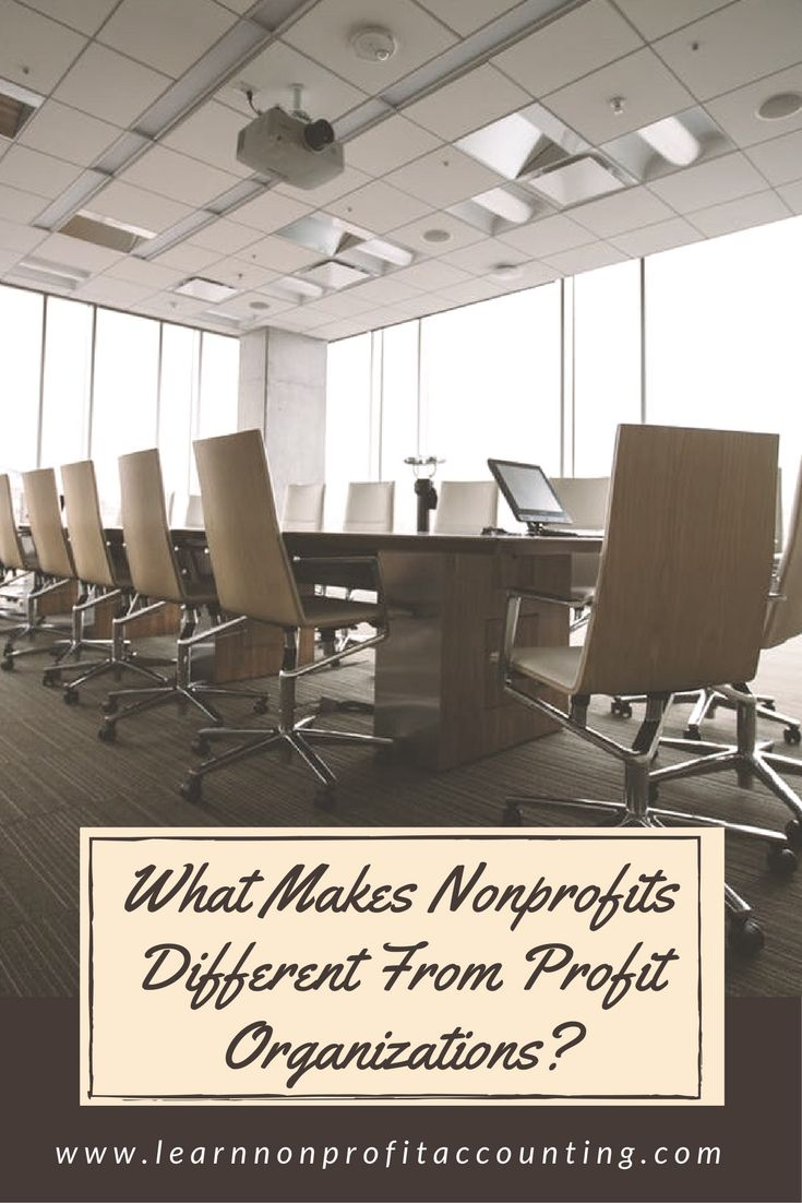 What Makes Nonprofits Different than For Profit