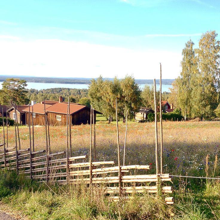 Love this yoga view. Tällberg Dalarna in Sweden.