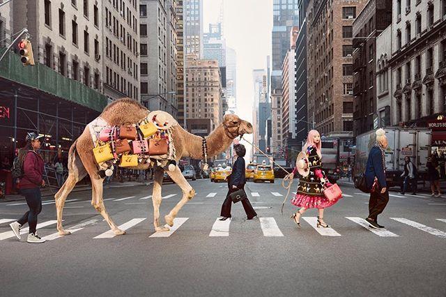 Kini Kate Spade New York membawa nuansa Timur Tengah ke pusat perkotaan Manhattan dengan menghadirkan seekor unta pada kampanye spring 2017. Deborah Lloyd selaku President and Chief Creative Officer menyuguhkan nuansa festive negara Afrika Utara secara kontras dengan menggaet model Tiongkok yang identik dengan warna rambut powder pink yaitu Fernanda Ly. Di kala Fernanda tampil cantik mengenakan dress warna merah dengan outerwear bermotif unta strappy heels dan tas bersiluet structured unta…
