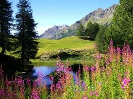 alaska imagenes paisajes - Buscar con Google