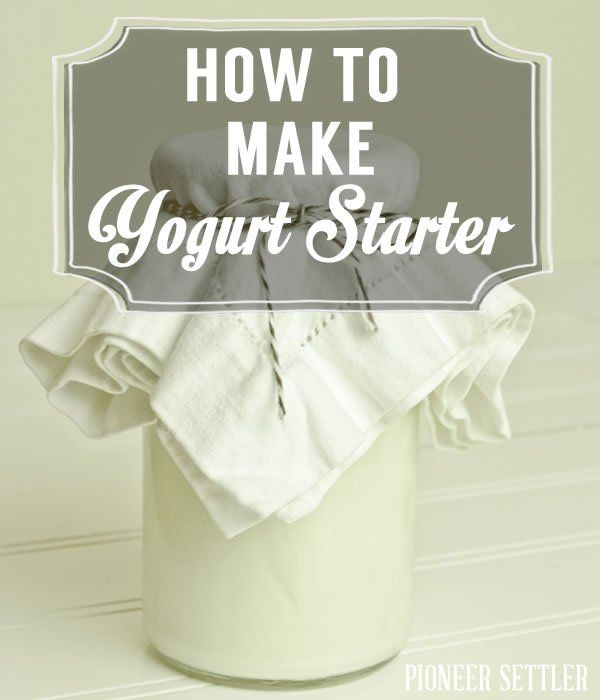 How to Make Yogurt Starter | Homesteading Simple Self Sufficient Off-The-Grid | Homesteading.com
