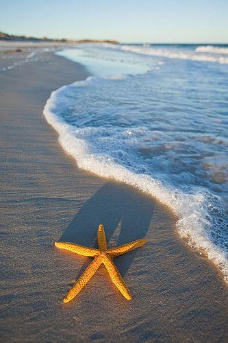 Thuruna Beach - Eyre Peninsula, Southern Australia