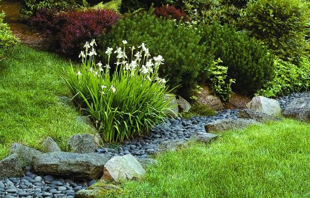 These landscape solutions for dealing with storm water manage to look good, too