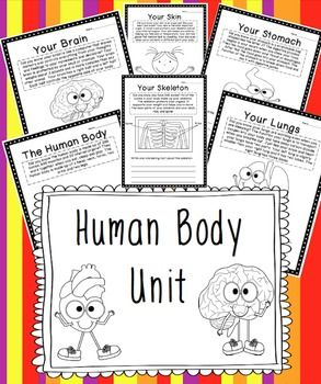 "I created this ""No Fluff"" unit to teach my second graders about the human body.  I covered pretty much everything that was expected by our district that our text book did not address.  This human body unit contains printables and foldables to introduce your little ones to: The Human BodyFunctions of Each:HeartLungsBrainSkinKidneysStomachIntestineMuscleSkeletonFoldable for the Types of Scientists Who Study the Various Human body parts and…"