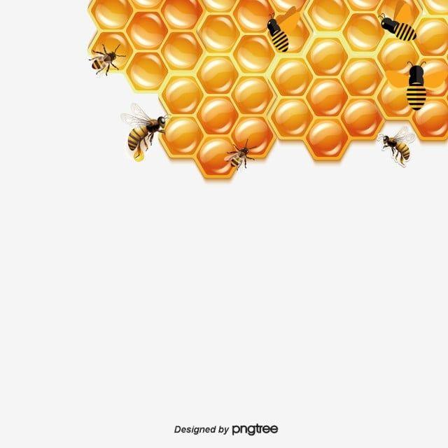 من ناحية رسم كرتون خلية نحل العسل الأصفر ناقلات اليد ناقلات الكرتون ناقلات النحل Png وملف Psd للتحميل مجانا Bee Clipart Honey Bee Hives How To Draw Hands