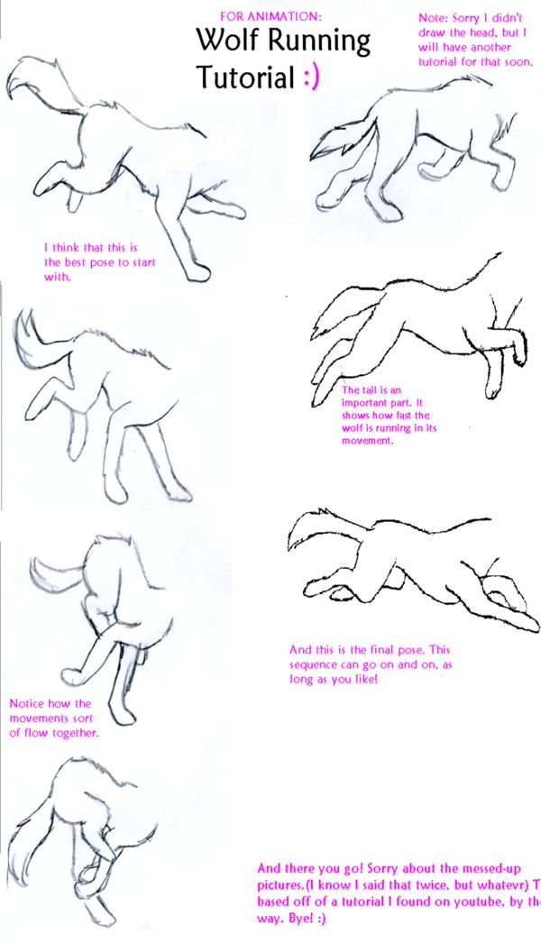 Wolf Run Tutorial by ~WolfsRainLuv22 on deviantART