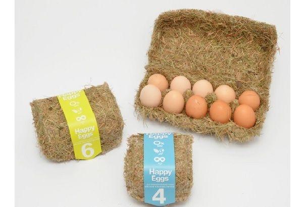 これは、地球に優しいパッケージだ。 ポーランドのデザイナー、Maja Szczypekさんがデザインしたのは、タマゴのパッケージ。多くは、プラスチックや紙のパックに入っていることが多いと思いますが、こちらは、干し草で作られています。 熱プレス機で成形された干し草のパッケージは、プラスチックのパッケージに入れられているよ...