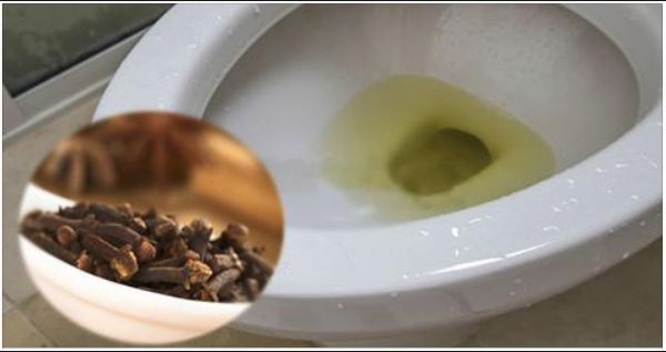 Aprende como llevar acabo este truco con el que podrás eliminar cualquier olor que quede de orina en el baño de tu hogar de un momento para otro
