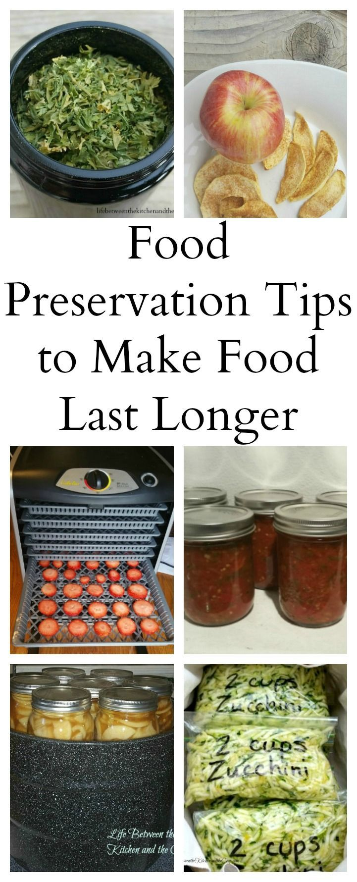 Between produce from the garden and buying in bulk to save money, there is always the challenge of making sure food does not go bad before you can use it. I figure you probably deal with that challenge, too, so I want to share some tips with you! Click through for some great ideas, whether you are dehydrating, canning, freezing, or just finding the right containers to prolong food life!