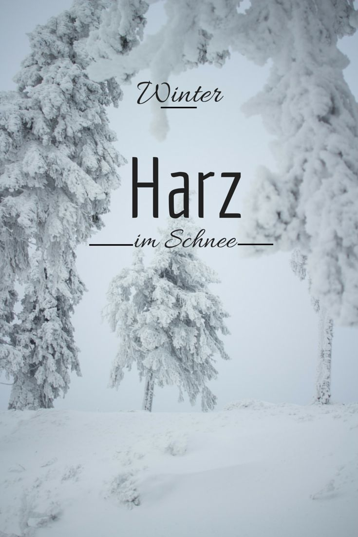Winter im Harz  http://www.travelandlipsticks.de/index.php/de/blog/26-heimat/302-braunlage  #harz