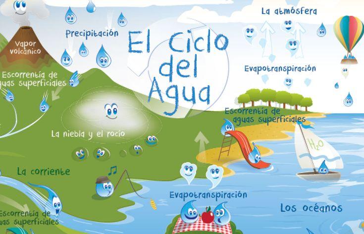 El ciclo de agua Para Niños - grades 4-6