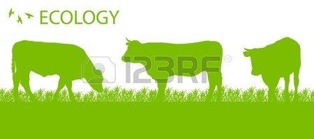 Negozio di bestiame ecologia sfondo concetto vettore agricoltura biologica Archivio Fotografico