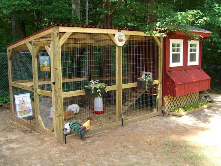 61 best backyard chicken coops images on pinterest for Backyard chicken coop plans