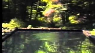 bill viola - YouTube