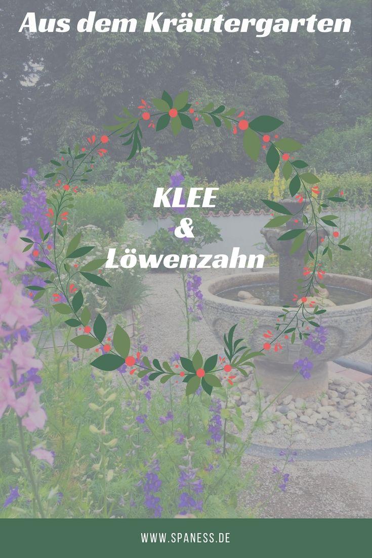 Wellness Blogger Kräutergarten - Klee Gesundheit // Rezept mit Löwenzahn