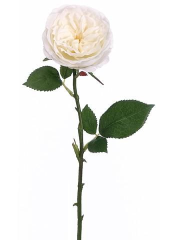 "Silk Rose Stem in White<br>3"" Wide Bloom x 20.5"" Tall"