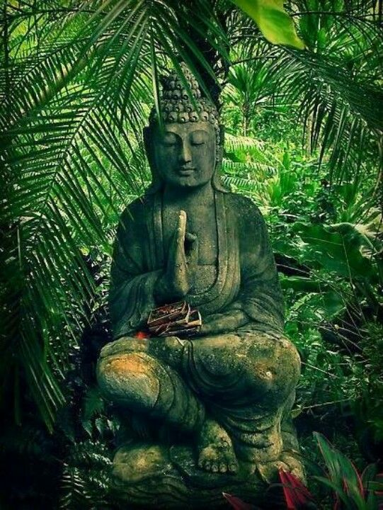 """""""Knowledge is learning something everyday. Wisdom is letting go of everyday."""" -Zen proverb"""