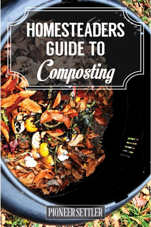 A Homesteader's Guide to Composting | How To Compost Tutorial | Try Many Types Of Farming For You And Your Homestead