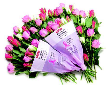 Beautiful Pirkka Pink Ribbon roses