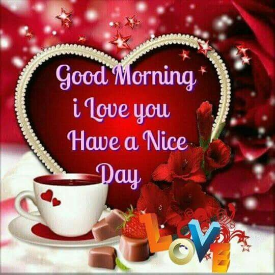 Good Day Love Quotes: Good Morning I Love You Have A Nice Day Morning Good