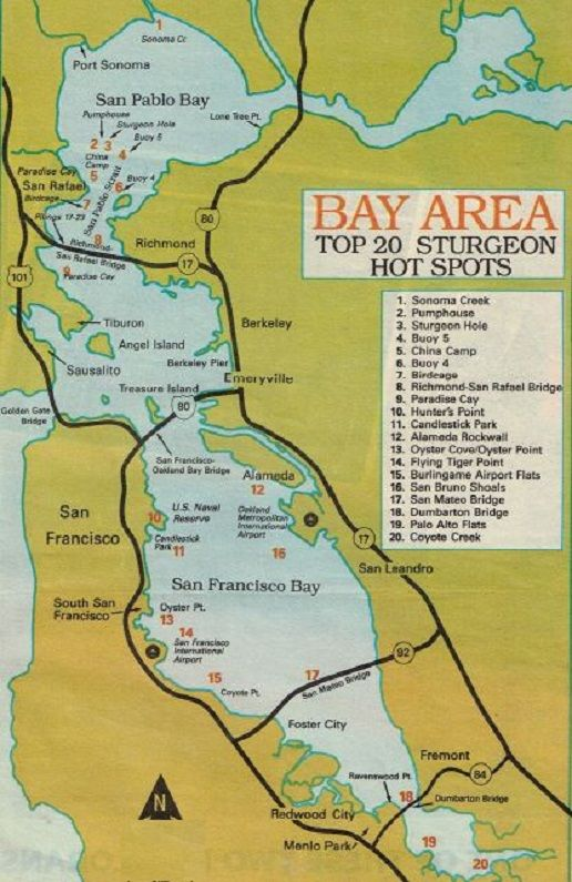 Best 25 fishing maps ideas only on pinterest bass for Hunting and fishing forecast
