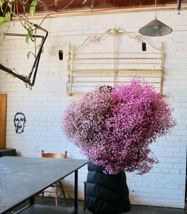 An amazing mass of pink baby's breath #sydneyweddingflowers #sydneyflorist