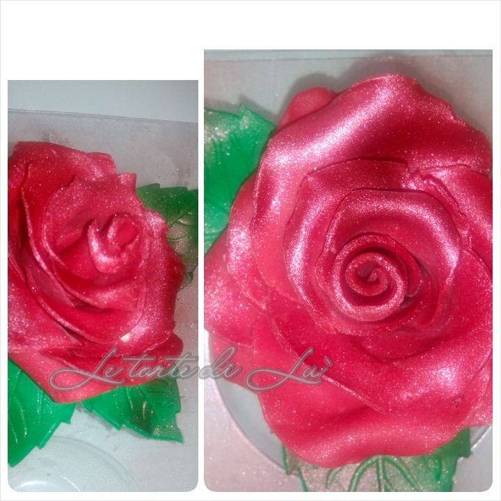 Rose in pdz