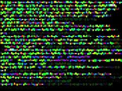 John Maeda, Color Typewriter