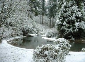 The Peace Garden in winter. The Grotto, in Portland, Oregon. Absolutely peaceful. This kind of makes me hope it snows when we're there.