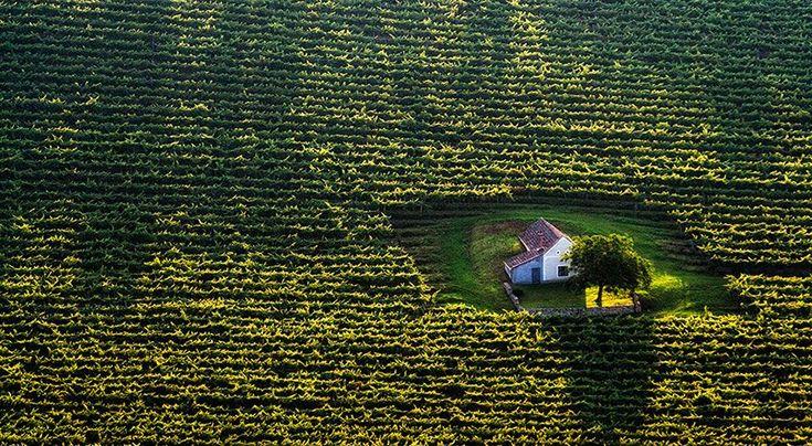 Kis magyar tanya felülnézetből