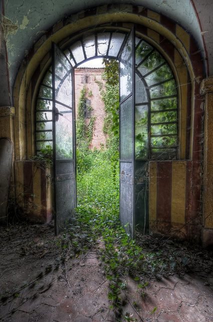 Door to and abandoned garden that is creeping in to take over the house