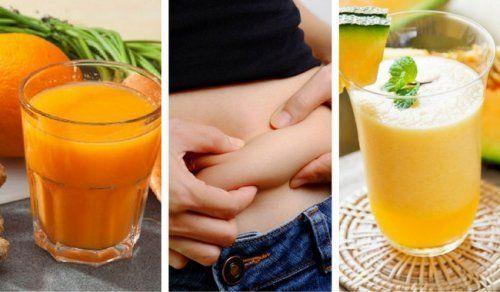 Di seguito vogliamo condividere 5 deliziose ricette di frullati per perdere peso e rafforzare il sistema immunitario da integrare alla propria dieta.