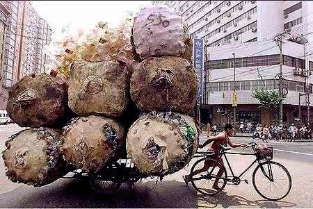 Bikes that Haul. Cargo Bikes and Trailers450 x 301 | 54.1KB | rideyourbike.com