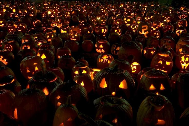 pumpkin fest on Fotopedia