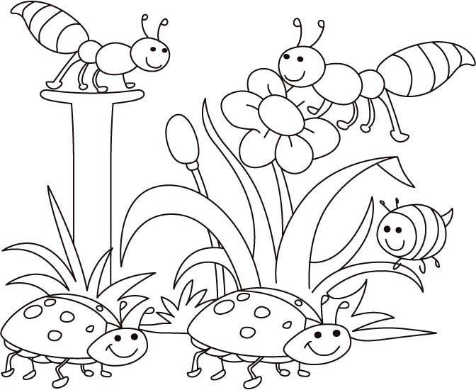 Insect Coloring Pages Spring Coloring Pages Easy Coloring Pages Insect Coloring Pages