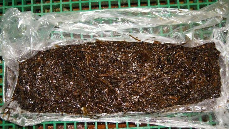 #Морская капуста (мороженая, судовая) 50р./кг. Доставка в любой регион РФ