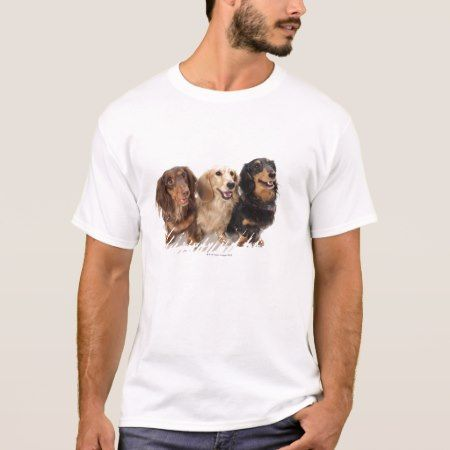 Three Dachshund Dogs T-Shirt - click/tap to personalize and buy