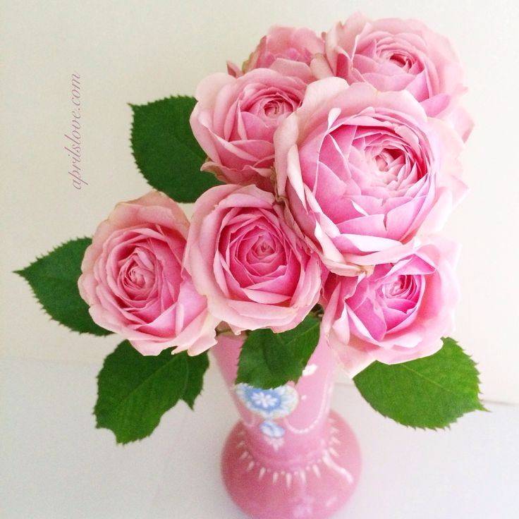 Pink roses in a shabby vintage milk glass vase... Heaven!