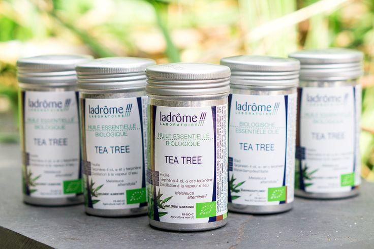 Tea tree olie is onmisbaar in elke huisapotheek en met deze lijst van tien toepassingen van tea tree olie lees je precies waarom!