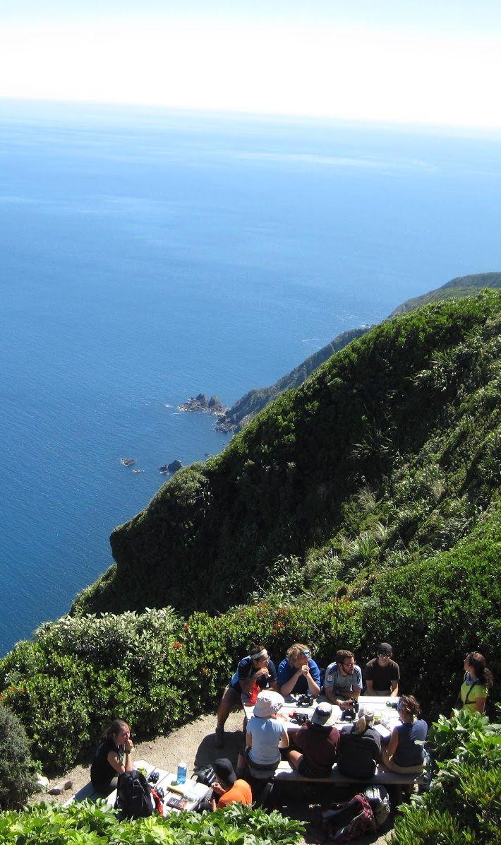 The view from the top of Kapiti Island, just off Kapiti Coast, Lower North Island, New Zealand