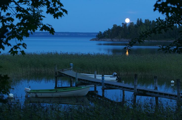 Scenes of Moonlight to Calm Daytime Jitters