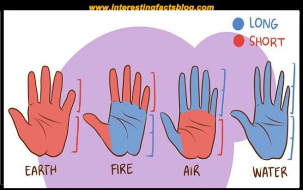 What Does The Shape Of Your Hand Reveals About You Palm Reading